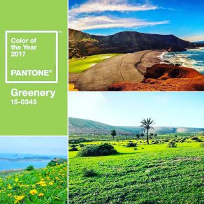 Greenery Lanzarote wedding destination