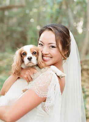 Brides and her dogs
